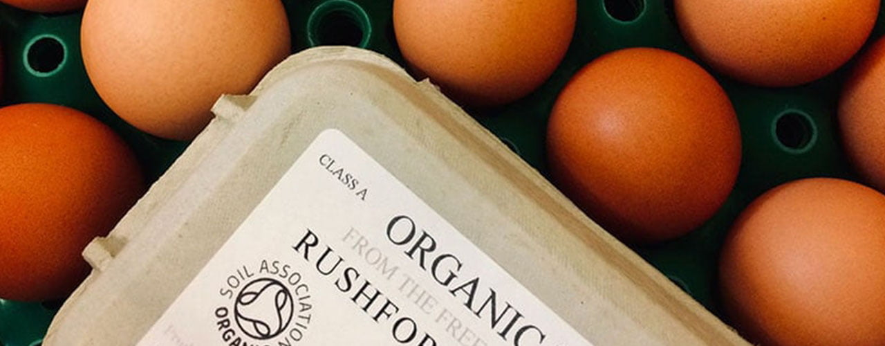 Organic Free-Range Eggs from Devon