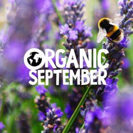 Organic September Offers