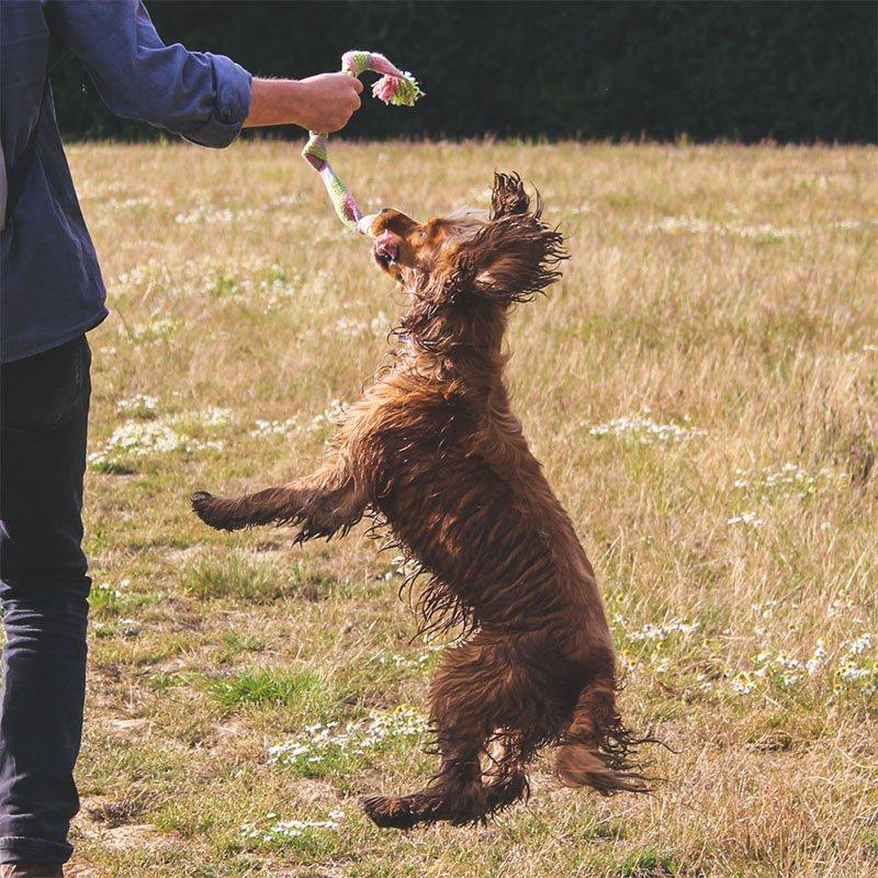 Beco Pets Hemp Squeaker Dog Toy