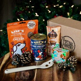 Christmas Dog Treats Gift Box Box Hamper