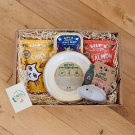 Christmas Cat Treats Gift Box Box Hamper